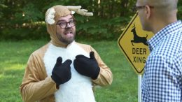 How To Avoid A Deer Strike | Consumer Reports 1