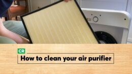 How To Clean An Air Purifier | Consumer Reports 1
